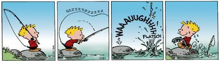 Calvin vom 09.08.2017