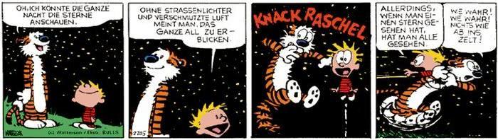 Calvin vom 23.08.2017