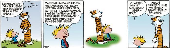 Calvin vom 06.10.2017