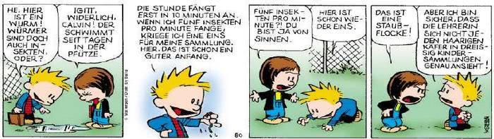 Calvin vom 15.08.2018