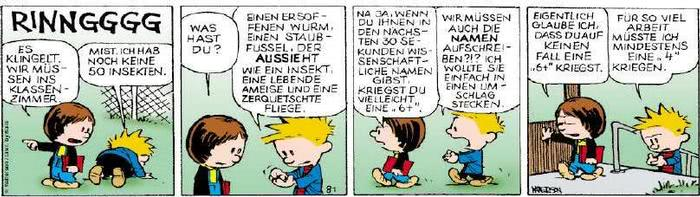 Calvin vom 16.08.2018