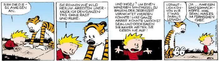 Calvin vom 14.11.2018