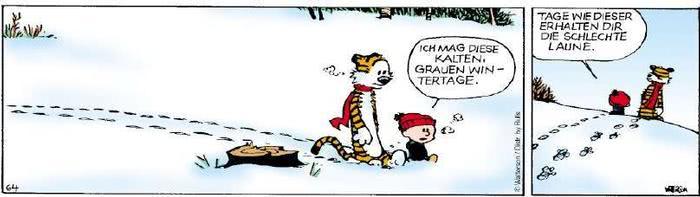 Calvin vom 17.12.2018