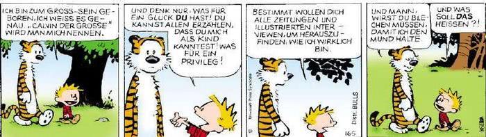 Calvin vom 01.02.2019