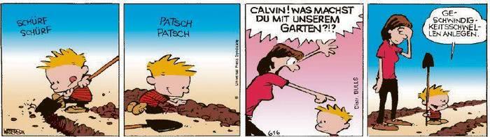 Calvin vom 24.09.2020