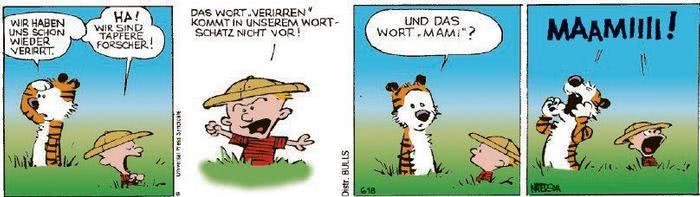 Calvin vom 28.09.2020