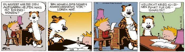 Calvin vom 19.11.2020
