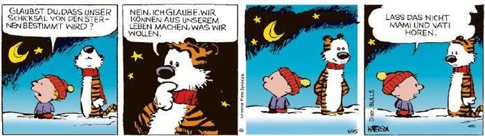 Calvin vom 03.12.2020