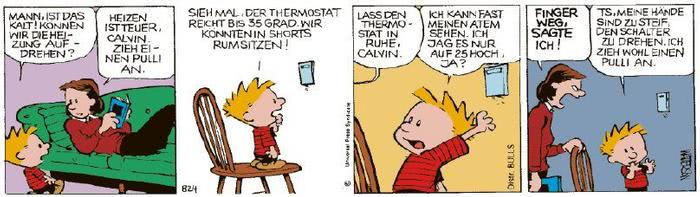 Calvin vom 05.01.2021