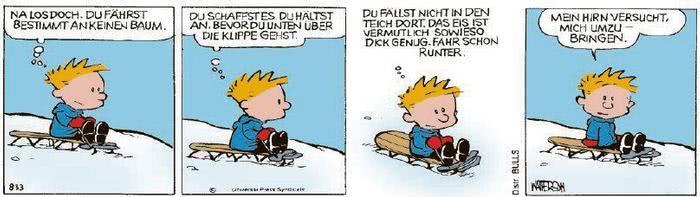 Calvin vom 18.01.2021
