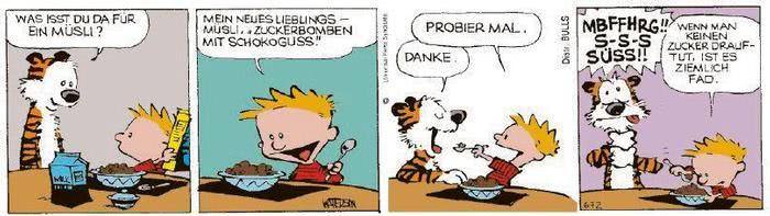 Calvin vom 20.01.2021