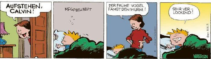 Calvin vom 26.01.2021