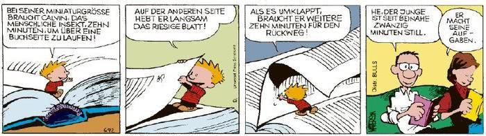 Calvin vom 17.02.2021