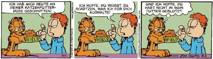 Garfield vom 17.11.2020