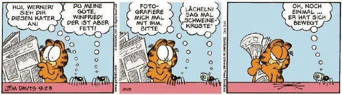 Garfield vom 10.12.2020