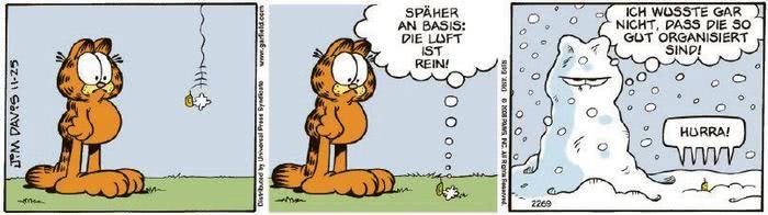 Garfield vom 29.12.2020
