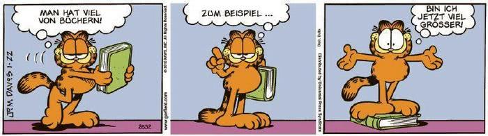 Garfield vom 29.01.2021