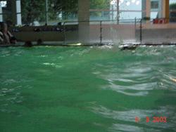 Einführung für angehende Schwimmsportleitende 2003 - Bild  27