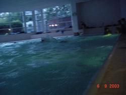 Einführung für angehende Schwimmsportleitende 2003 - Bild  29
