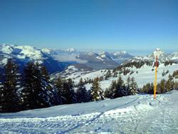 Skitag im Hoch Ybrig 2017 - Bild  1