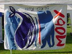 Schweizermeisterschaften 2003 - Bild  1