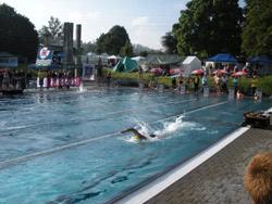 Schweizermeisterschaften 2009 - Bild  68